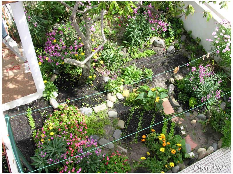 Almo jardin 7 OPT