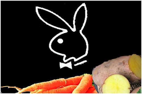 Lapin carotte
