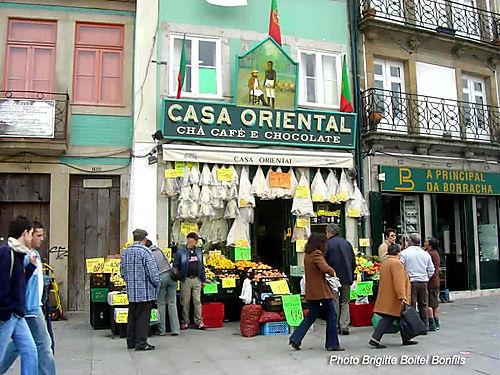 CASA Oriental OPT