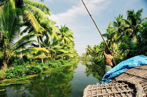 Kerala, Inde du sud, janvier 2003 058