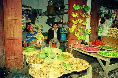 Sumatra, décembre 93 008-7