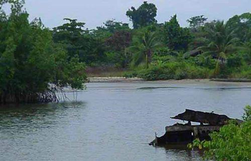 Rio Mbini