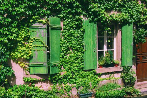 France juin -juillet 09- 2- 053
