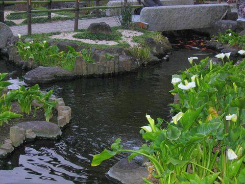 Jardin eau 1