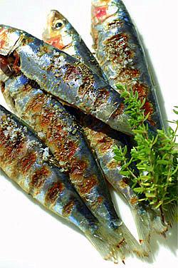 Sardines grill-es