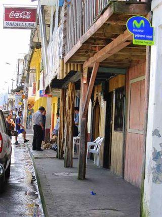 Shel rue 2