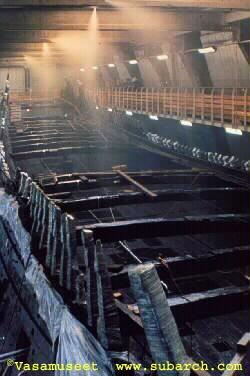 Vasa conservation
