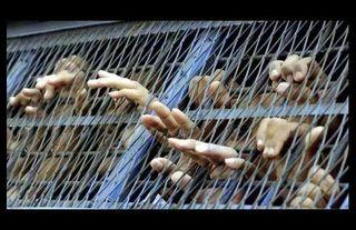 Au_bangladesh_ce_sont_les_detenus_qui_executent_les_condamnes_a_mort