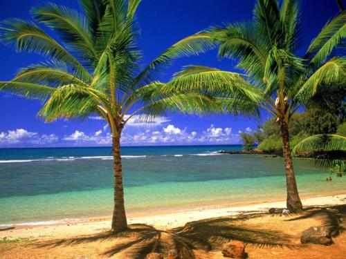Tropical_lagoon-normal
