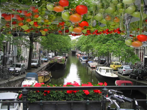Amsterdam_canal_opt