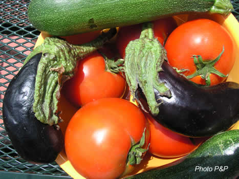 Aubergines_courgettes_opt