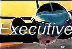 Executive_opt