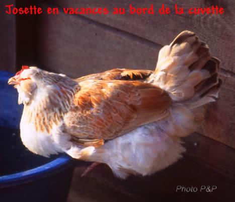 Josette_en_vacances_opt
