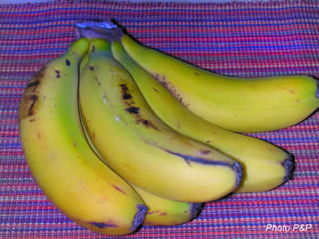 Main_de_banane_de_madeira_opt
