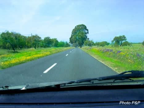 Suivons_la_route_fleurie_opt