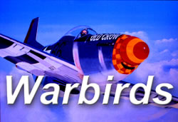 Vignette_warbirds_opt