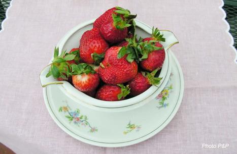 Dj_les_fraises_opt_2