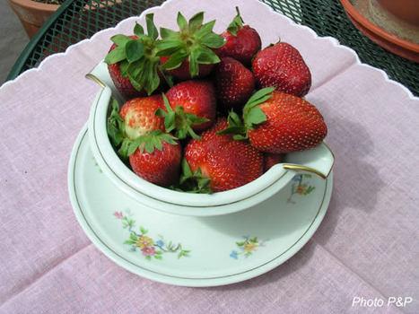 Bol_de_fraises_2_opt