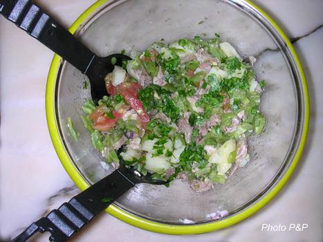 Salade_de_boeuf_opt