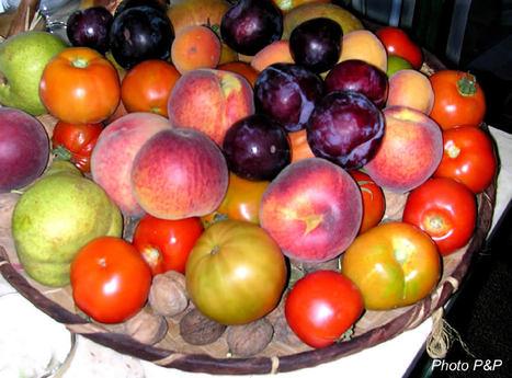Corbeille_fruits_opt
