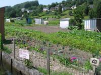 Le_jardin_de_mon_pre_opt
