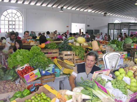 Mercado_de_milfontes_opt